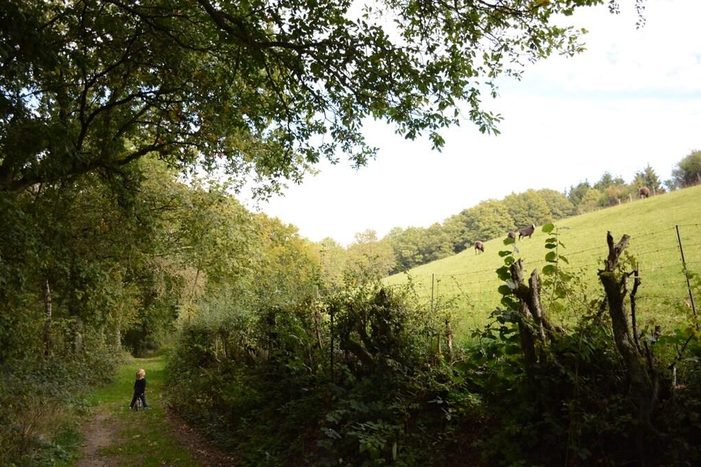 Natuur in Luxemburg