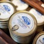 Blikjes sardines in olijfolie van De Olijfboom in Brugge