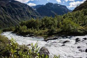Een kleine waterval met rotsen tussen de bergen en dennebomen van Jotunheimen in Noorwegen