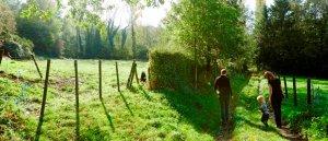 Vlaamse Ardennen wandelen