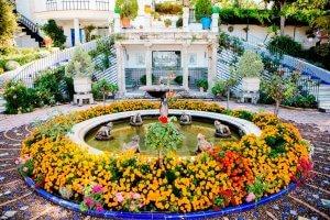 Ronde fontein met kikkerbeeldjes en bloemen rond