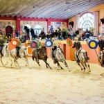 6 ruiters demonstreren de Andalusische rijstijl in een arena