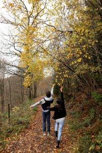 Wandelaars in een bos in de Hoge Venen