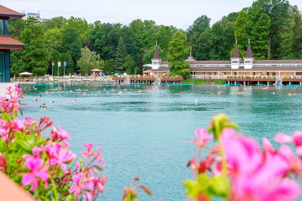 Uitzicht achter roze bloemen van een meer met zwemmende mensen