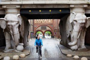 Fietser rijdt uit poort met twee grote stenen olifanten