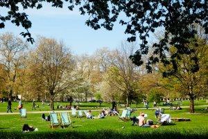 Grasveld met tuinstoelen in een park in Londen