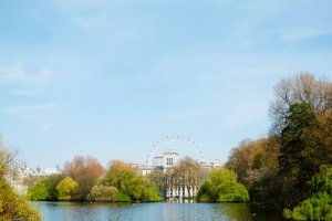 Uitzicht vanuit een park op The Eye van Londen