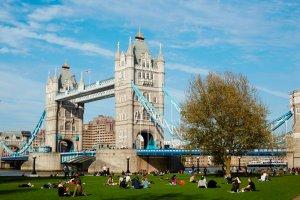 Grasvekd met mensen en Tower Bridge in de achtergrond