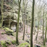 Rotsen en bomen langs de B2 wandelroute in Berdorf