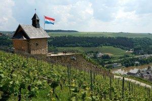 Uitzicht van Koeppchen in Luxemburg