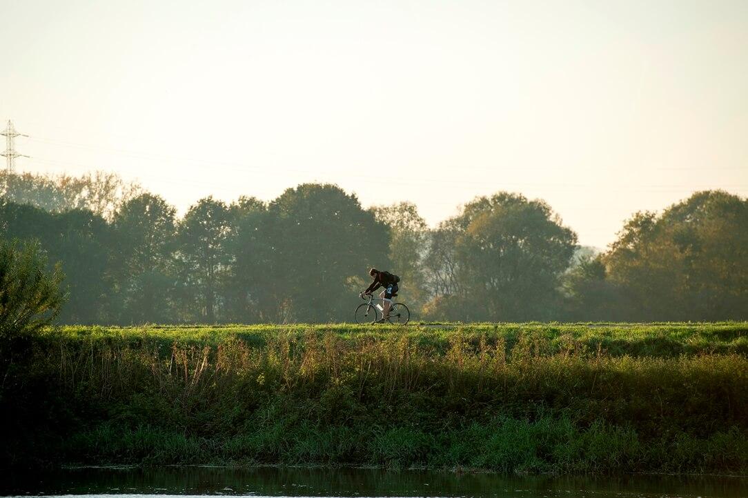 Fietser in landschap rondom Mechelen