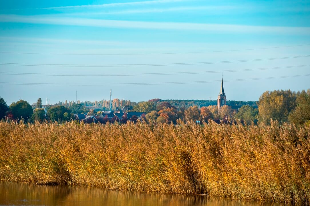 Natuur rond Mechelen