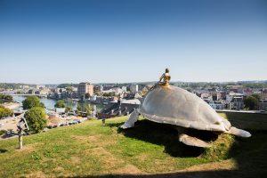 Grasveld met bronzen beeld van een man op een schildpad dat uitkijkt op Namen