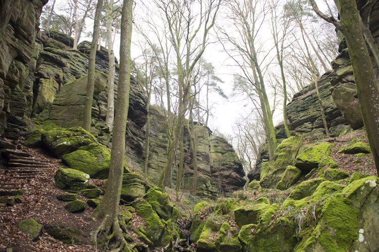 Boswandeling tussen rotsen rond Berdorf; Luxemburg