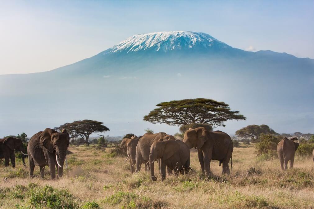 Afrika Tanzania