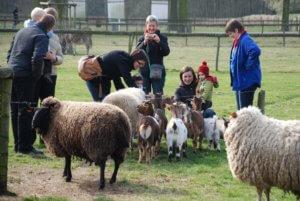 Kinderboerderij Rivierenhof
