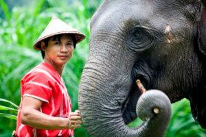 Bestemmingen huwelijksreis Thailand