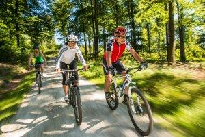Mountainbike Rheinland-Pfalz