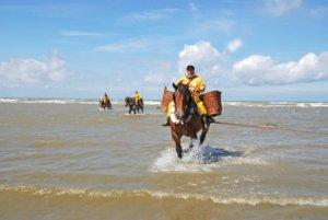 Wat te doen in mei zee kust