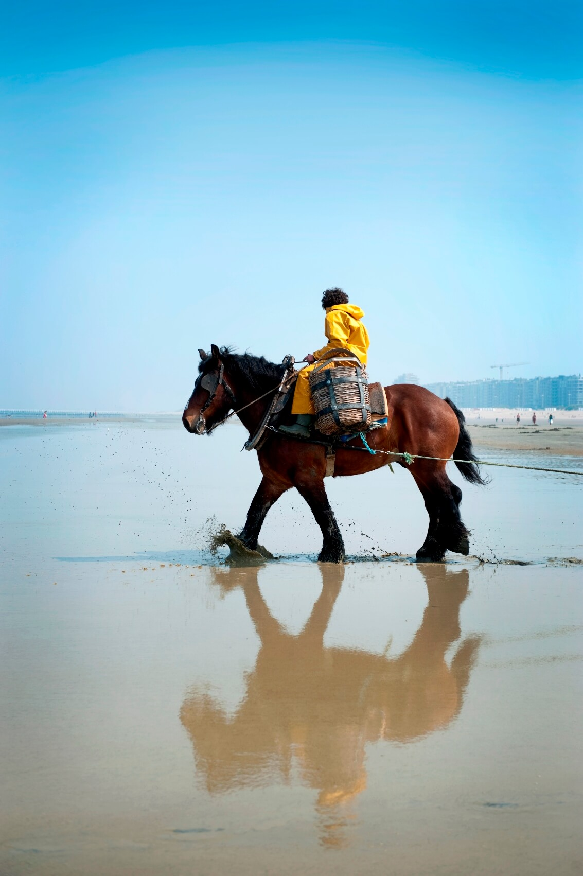 Onze favoriete tips en adresjes aan de kust in Koksijde