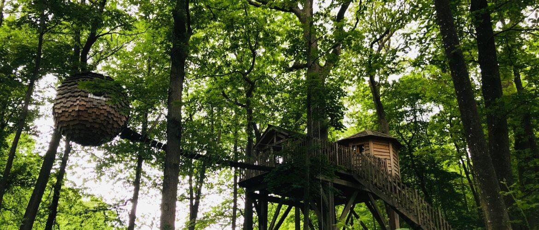 Cabanes des Grands Chênes