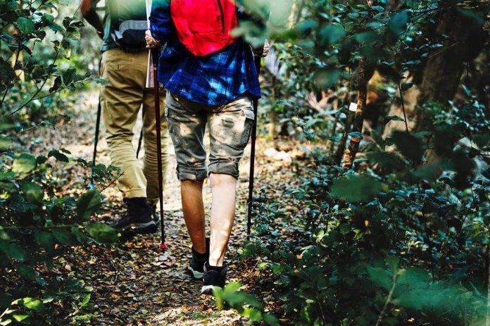 Kies mee de mooiste wandeling en wandelroutes van het land