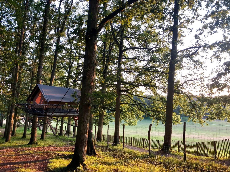Boomtent Wildpark Domein van de Grotten van Han Han-sur-Lesse
