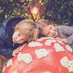 Efteling - Een magisch avontuur