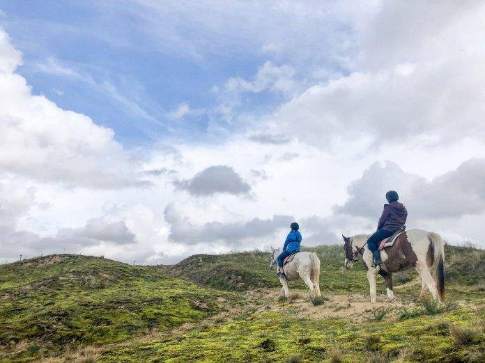 Coronaproof paardrijden in de duinen van Koksijde-Oostduinkerke